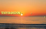 THYROIDIN – தைரோடின்- செம்மறி ஆட்டுக் குட்டியின் தைராய்டு சுரபியிலிருந்து எடுக்கப்பட்டது.
